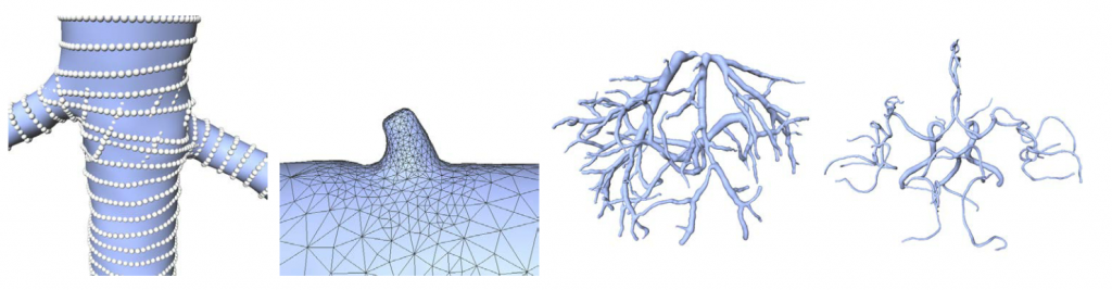 Reliable Adaptive Modelling of Vascular Structures with Non-Circular Cross-Sections